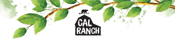 cal-ranch-foods